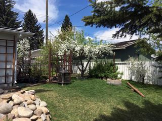 Photo 40: 6139 Buckthorn Road NW in Calgary: Thorncliffe Detached for sale : MLS®# A1070955