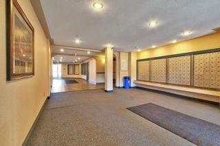 Photo 24: 131 11325 83 Street in Edmonton: Zone 05 Condo for sale : MLS®# E4259176