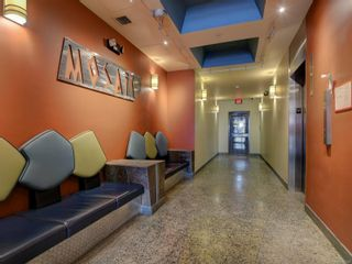 Photo 19: 311 1061 Fort St in : Vi Downtown Condo for sale (Victoria)  : MLS®# 866095