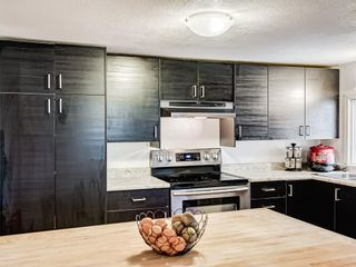 Photo 12: 69 3223 83 Street NW in Calgary: Greenwood/Greenbriar Mobile for sale : MLS®# A1133242