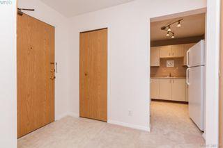 Photo 3: 106 3258 Alder St in VICTORIA: SE Quadra Condo for sale (Saanich East)  : MLS®# 775931