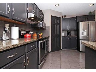 Photo 8: 13042 DOUGLAS RIDGE Grove SE in Calgary: Douglas Rdg_Dglsdale Residential Detached Single Family for sale : MLS®# C3653253