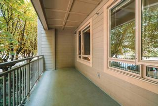 """Photo 19: 214 119 W 22ND Street in North Vancouver: Central Lonsdale Condo for sale in """"ANDERSON WALK"""" : MLS®# R2598476"""