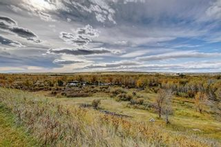 Photo 21: 370007 48 Street E: Rural Foothills County Detached for sale : MLS®# A1083666