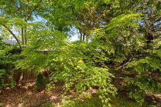 Photo 30: 368 Douglas St in : CV Comox (Town of) House for sale (Comox Valley)  : MLS®# 876193