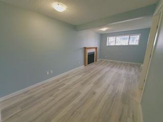 Photo 29: 23 Erin Meadows Court SE in Calgary: Erin Woods Detached for sale : MLS®# A1124454