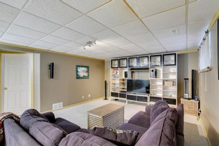 Photo 23: 164 Coventry Circle NE in Calgary: Coventry Hills Detached for sale : MLS®# A1102725