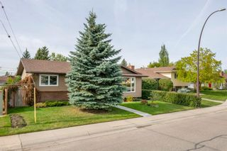 Photo 38: 131 Queensland Circle SE in Calgary: Queensland Detached for sale : MLS®# A1148253