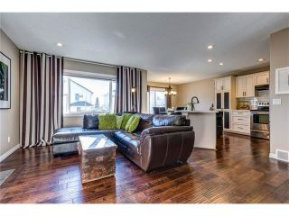 Photo 3: 41 ROYAL BIRCH Crescent NW in Calgary: Royal Oak House for sale : MLS®# C4041001