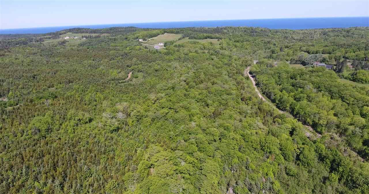 Main Photo: LOT Highway 217 in Centreville: 401-Digby County Vacant Land for sale (Annapolis Valley)  : MLS®# 202012827