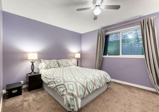 Photo 17: 205 RUNDLESON Place NE in Calgary: Rundle Detached for sale : MLS®# A1153804