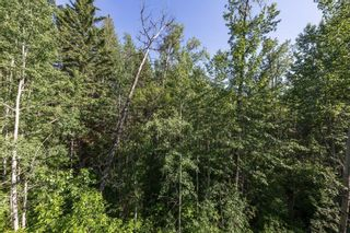 Photo 31: 7 100 Heron Point Close: Rural Wetaskiwin County Townhouse for sale : MLS®# E4251102