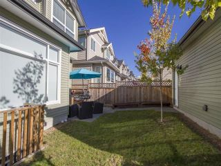 Photo 20: 10430 JACKSON ROAD in Maple Ridge: Albion House for sale : MLS®# R2116275