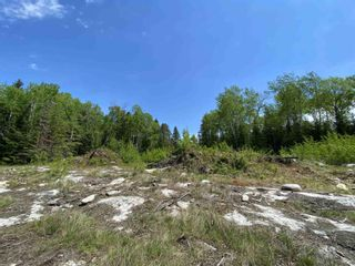 Photo 5: 31 SCHOOL ROAD in KENORA: Vacant Land for sale : MLS®# TB211480