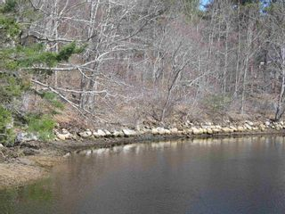 Photo 2: Lot 1 Highway 331 in Conquerall Bank: 405-Lunenburg County Vacant Land for sale (South Shore)  : MLS®# 202107962