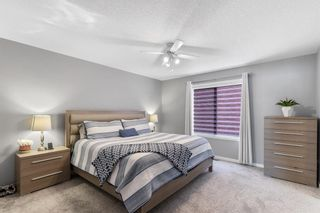 Photo 28: 162 Howse Rise NE in Calgary: Livingston Detached for sale : MLS®# A1153678