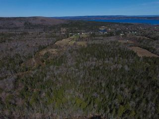 Photo 7: 141 Scotch Lake Road in Georges River: 204-New Waterford Vacant Land for sale (Cape Breton)  : MLS®# 202102227