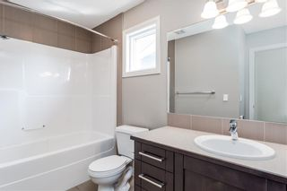 Photo 31: 166 Cranford Green SE in Calgary: Cranston Detached for sale : MLS®# A1062249