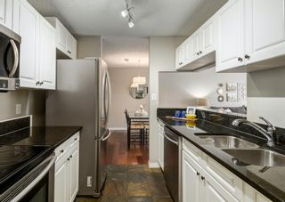 Photo 17: 304 545 18 Avenue SW in Calgary: Cliff Bungalow Apartment for sale : MLS®# A1129205