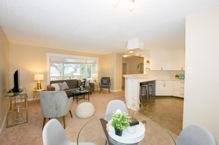 Photo 9: 246 Allan Crescent SE in Calgary: Acadia Detached for sale : MLS®# A1062297