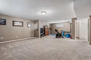 Photo 26: 296 Mt. Brewster Circle SE in Calgary: McKenzie Lake Detached for sale : MLS®# A1118914