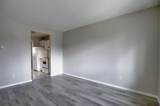 Photo 13: 18 12 TEMPLEWOOD Drive NE in Calgary: Temple Row/Townhouse for sale : MLS®# A1021832