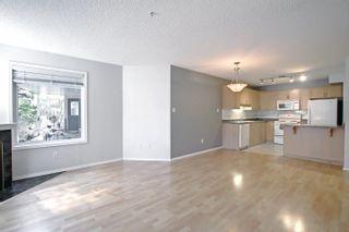 Photo 11: 104 8909 100 Street in Edmonton: Zone 15 Condo for sale : MLS®# E4262789