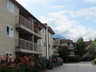 Photo 6: B303 40120 WILLOW CRESCENT in Squamish: Garibaldi Estates Condo for sale : MLS®# R2294966