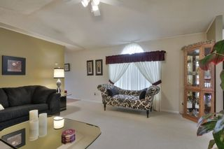Photo 16: 52117 RGE RD 53: Rural Parkland County House for sale : MLS®# E4246255