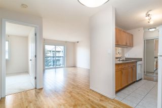 Photo 12: 405 279 Suder Greens Drive in Edmonton: Zone 58 Condo for sale : MLS®# E4235498