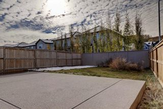 Photo 37: 5 CHAPARRAL VALLEY Crescent SE in Calgary: Chaparral Detached for sale : MLS®# C4232249