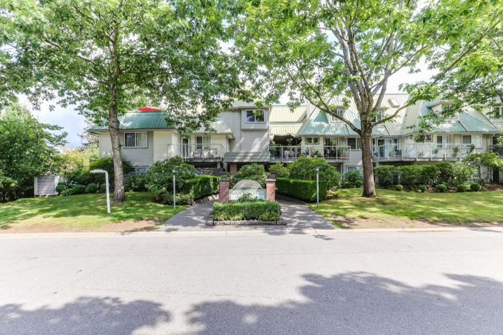"""Main Photo: 303 22275 123 Avenue in Maple Ridge: West Central Condo for sale in """"Mountain View Terrace"""" : MLS®# R2389765"""