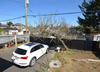Photo 32: 5794 ST. MARGARETS Street in Vancouver: Killarney VE House for sale (Vancouver East)  : MLS®# R2570216