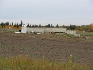Photo 5: 55516 RR 241: Rural Sturgeon County Rural Land/Vacant Lot for sale : MLS®# E4259412