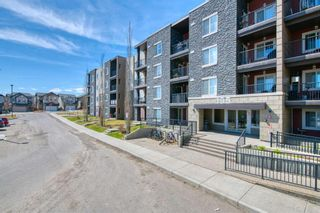 Main Photo: 209 195 Kincora Glen Road NW in Calgary: Kincora Apartment for sale : MLS®# A1100733