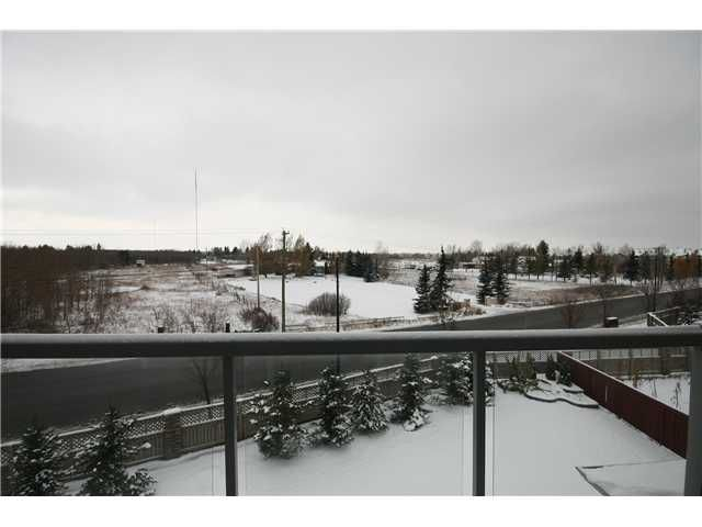 Photo 14: Photos: 51 WESTON Rise SW in CALGARY: West Springs Residential Detached Single Family for sale (Calgary)  : MLS®# C3544531