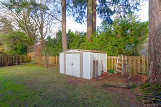 Photo 31: 436 Tipton Ave in VICTORIA: Co Wishart South House for sale (Colwood)  : MLS®# 803370
