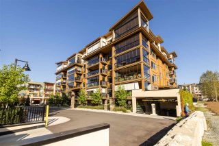 """Photo 29: B122 20716 WILLOUGHBY TOWN CENTRE Drive in Langley: Willoughby Heights Condo for sale in """"Yorkson downs"""" : MLS®# R2506272"""