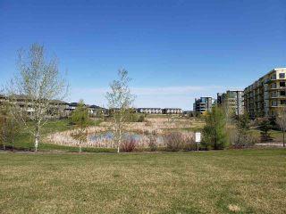 Photo 32: 219 1316 WINDERMERE Way in Edmonton: Zone 56 Condo for sale : MLS®# E4223412