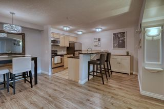 Photo 18: 102 881 15 Avenue SW in Calgary: Beltline Apartment for sale : MLS®# A1120735