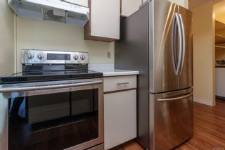 Photo 14: 304 1680 Poplar Ave in : SE Mt Tolmie Condo for sale (Saanich East)  : MLS®# 873736