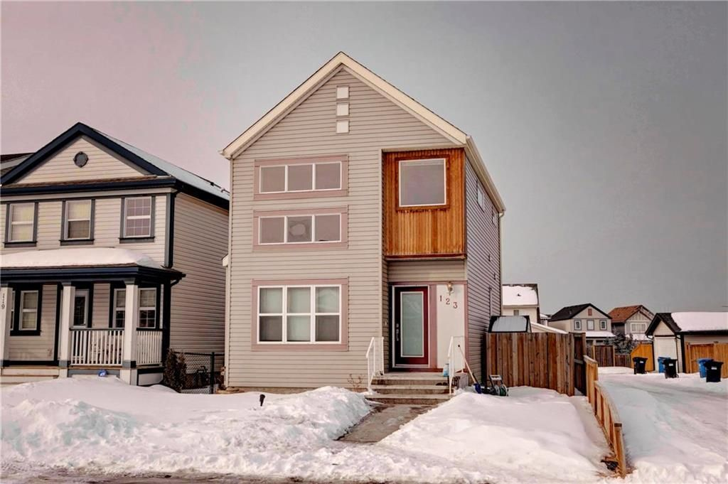 Main Photo: 123 COPPERSTONE Gardens SE in Calgary: Copperfield House for sale : MLS®# C4168083