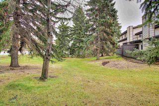 Photo 26: 15126 45 Avenue in Edmonton: Zone 14 Townhouse for sale : MLS®# E4219666