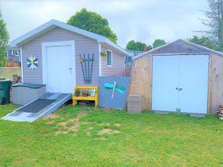 Photo 6: 18 Dickey Street in Amherst: 101-Amherst,Brookdale,Warren Residential for sale (Northern Region)  : MLS®# 202014757