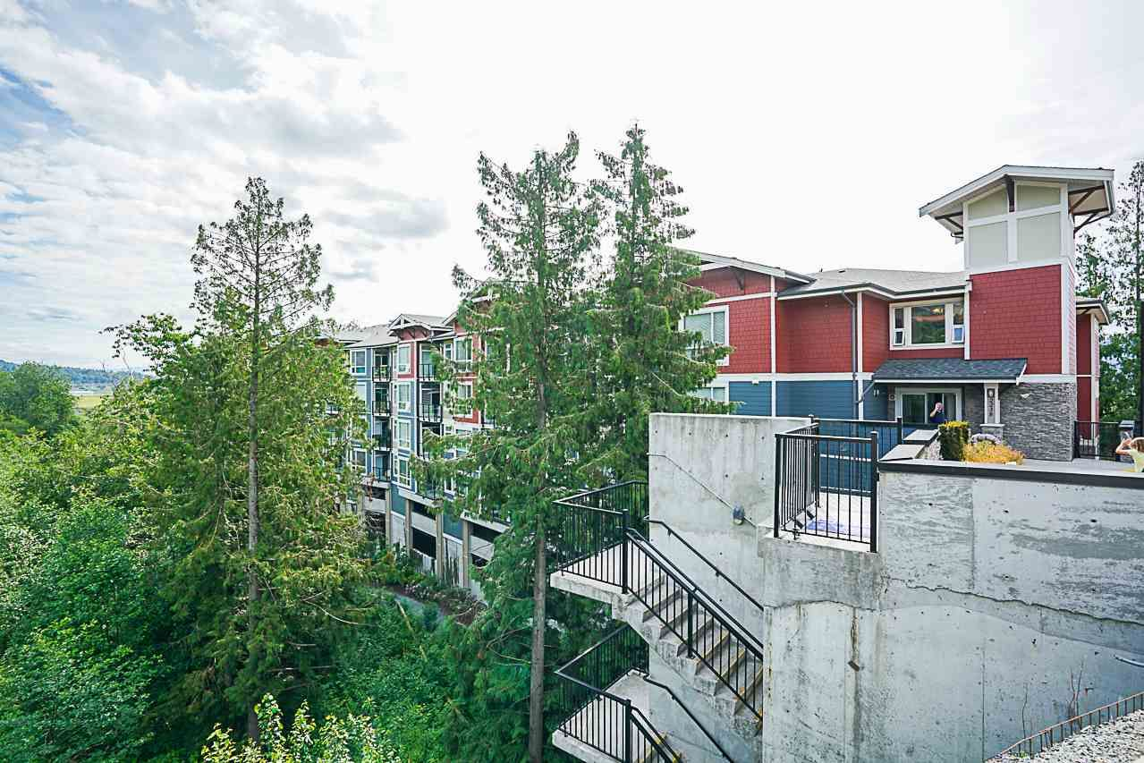 """Photo 2: Photos: 301 2238 WHATCOM Road in Abbotsford: Abbotsford East Condo for sale in """"Waterleaf"""" : MLS®# R2276818"""