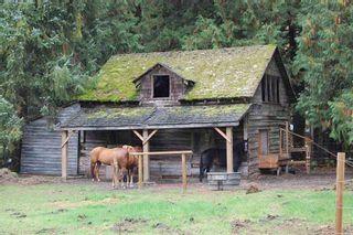 Photo 4: 14450 SQUAMISH VALLEY Road in Squamish: Upper Squamish House for sale : MLS®# R2539388