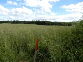 Photo 2: Lot 17 Second Division Road in Heathbell: 108-Rural Pictou County Vacant Land for sale (Northern Region)  : MLS®# 202116209