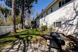 Photo 37: 4208 Morris Dr in : SE Lake Hill House for sale (Saanich East)  : MLS®# 871625