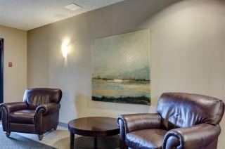 Photo 41: 403 7907 109 Street in Edmonton: Zone 15 Condo for sale : MLS®# E4220177