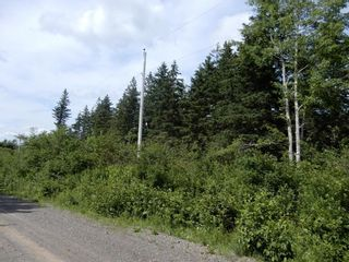 Photo 7: 299 New Lairg Road in New Lairg: 108-Rural Pictou County Vacant Land for sale (Northern Region)  : MLS®# 202117815